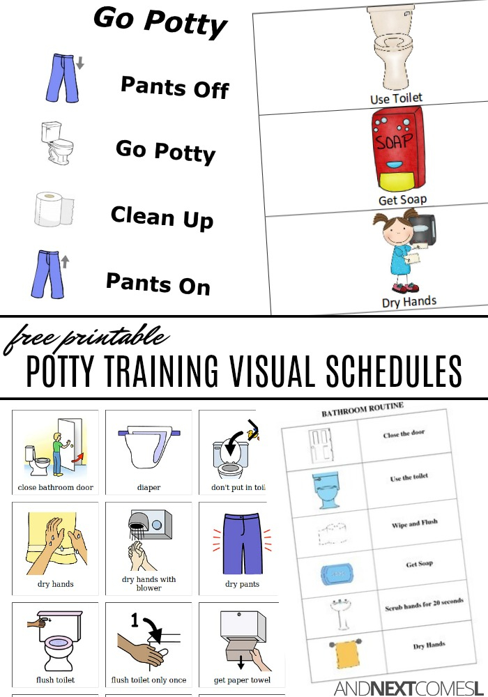 Free Potty Training Visual Schedules And Next Comes L