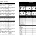 Insanity Workout Schedule Calendar Workout Essentials