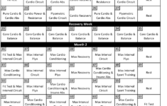 Insanity Workout Schedule Download Printable PDF