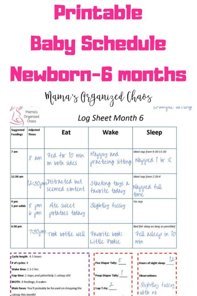 Printable Baby Schedule For Newborn To 6 Months SAHM