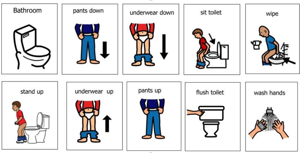 Toileting Schedule Handling Underwear And Pants In