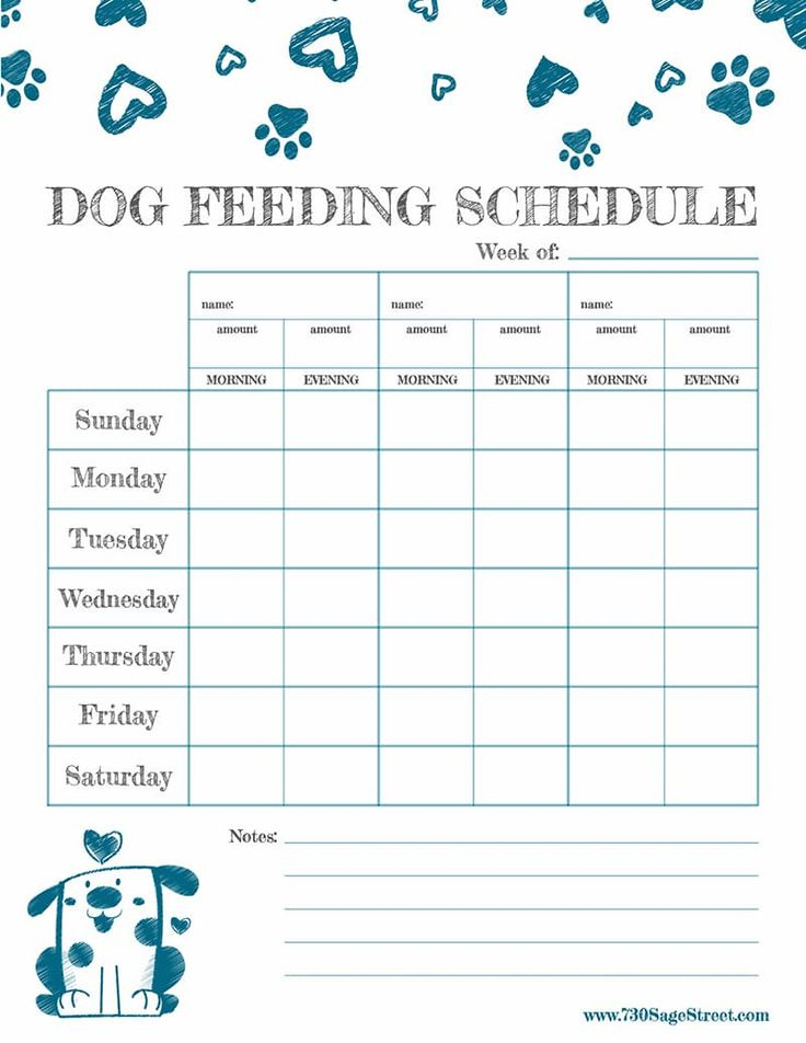 Free Printable Feeding Schedule To Track Your Dog s Food