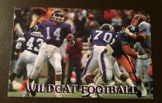 Northwestern Wildcats 1986 NCAA Football Pocket Schedule