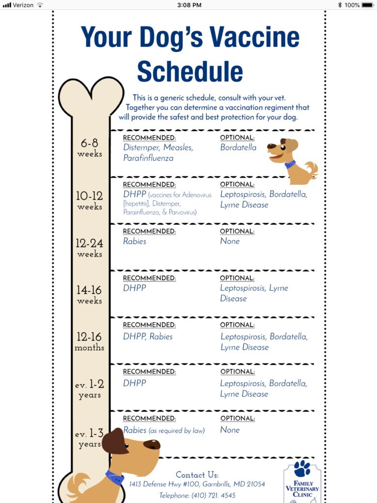 Puppy Shot Schedule Parvo Wayang Pets