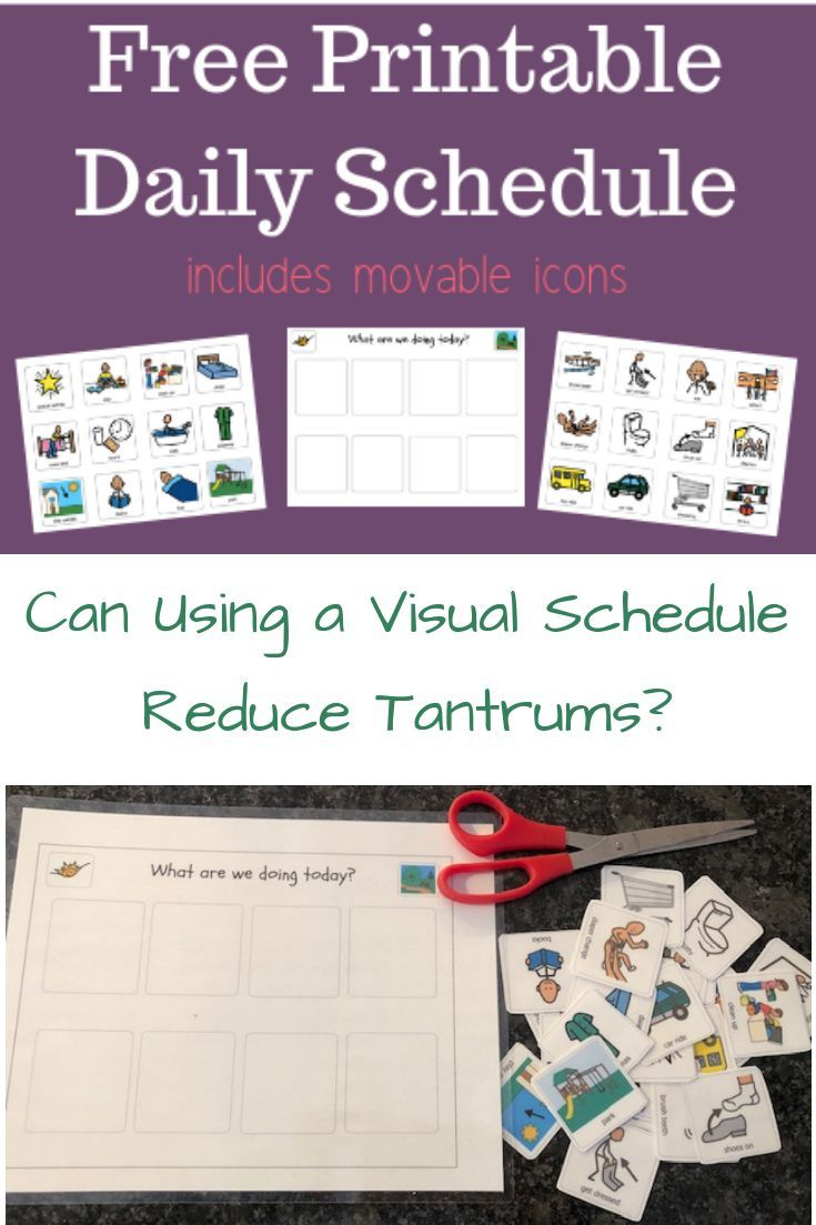 Toddler Visual Schedule With Movable Icons Free Printable
