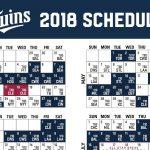Twins Printable Schedule That Are Genius Mason Website